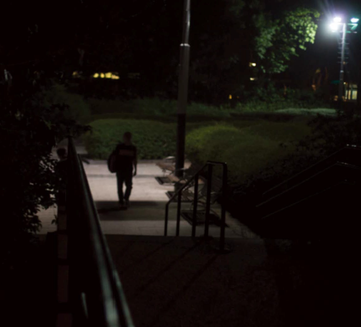 Walking among the light and the dark, Kowloon Park. Source: Liao Jiaming 2018.